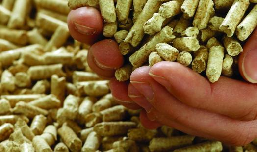 Presentan el primer índice de precios para calefactores y calderas de biomasa en Chile