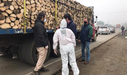 Seremi de Energía y Medio Ambiente refuerzan llamado a utilizar leña seca en los hogares de la regió...