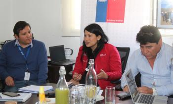 Buscarán desarrollar y agilizar proyectos de alumbrado público y electrificación rural en Atacama